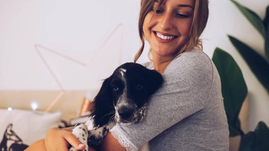 Mit dem Welpen zu Hause bleiben: Diese Agentur bietet Elternzeit für Haustierbesitzer