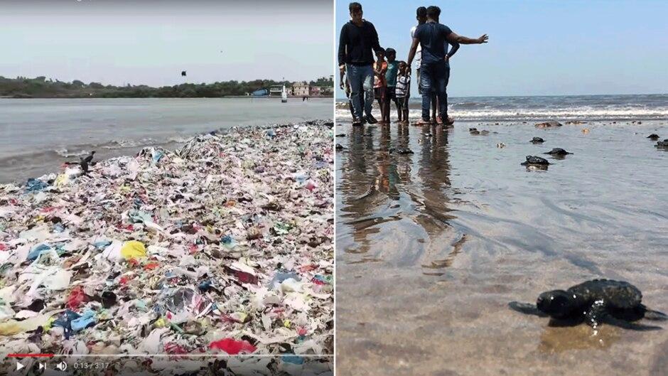 Links der Versova-Strand von Mumbai in 2015. Rechts der aufgeräumte Strand mit Baby-Schildkrötenin 2018.