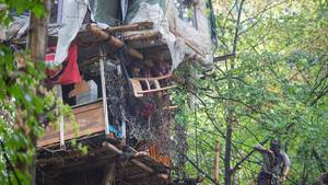 Baumhaus im Wald