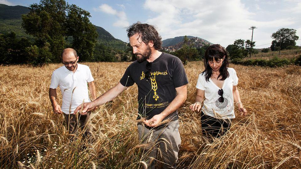 Antonio Pellegrino (M.) gründete mit Freunden eine Bauernkooperative