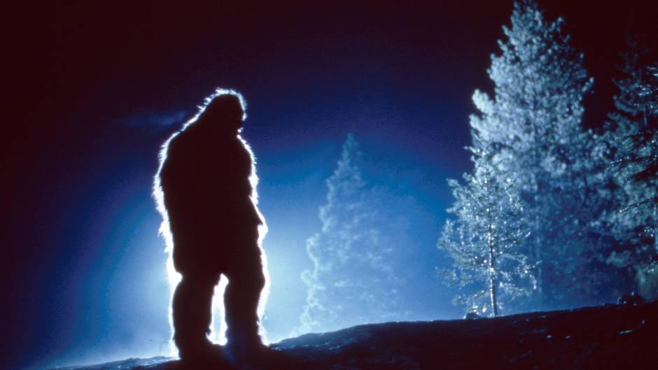 "Bigfoot kommt in zahlreichen Filmen und Serien vor, wie hier 1994 in ""Bigfoot: The Unforgettable Encounter"""