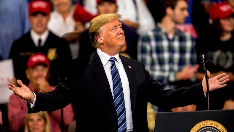 Donald Trump mit Karohemd-Typ
