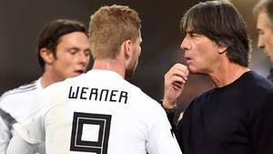 Joachim Löw beim Länderspiel der DFB-Elf gegen Peru mit Timo Werner