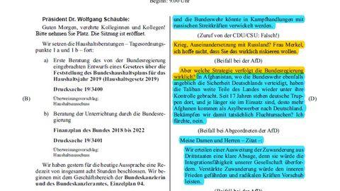 Alexander Gauland in der Generaldebatte - Seite 1