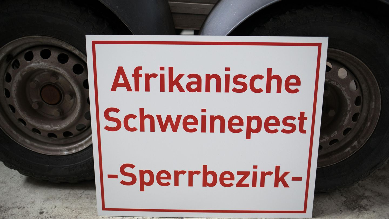 Afrikanische Schweinepest (Schild)