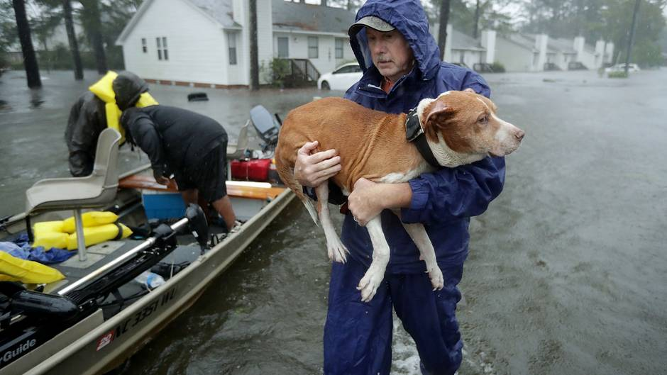 """Tropensturm: Video zeigt die gewaltige Zerstörungskraft von Hurrikan """"Florence"""""""