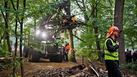 Schweres Räumgerät im Hambacher Forst