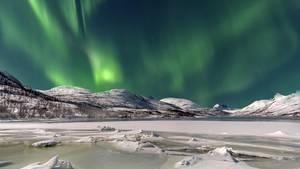 Der Himmel in tiefes Grün getaucht. So etwas sieht man nur, wenn Polarlicht-Saison ist.