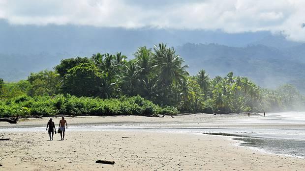 An der Pazifikküste: Die Gischt der Brandung weht in den Palmenhain