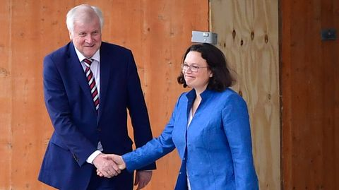 Werden wohl keine politischen Freunde mehr: Horst Seehofer und Andrea Nahles schüttelnsich Mitte September vor dem Kanzleramt eher gequält die Hand