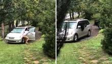 Bär verwüstet Familienwagen