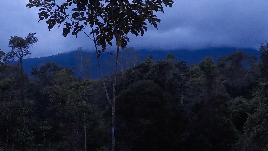 Eine Nacht in der Selva Bananito Lodge