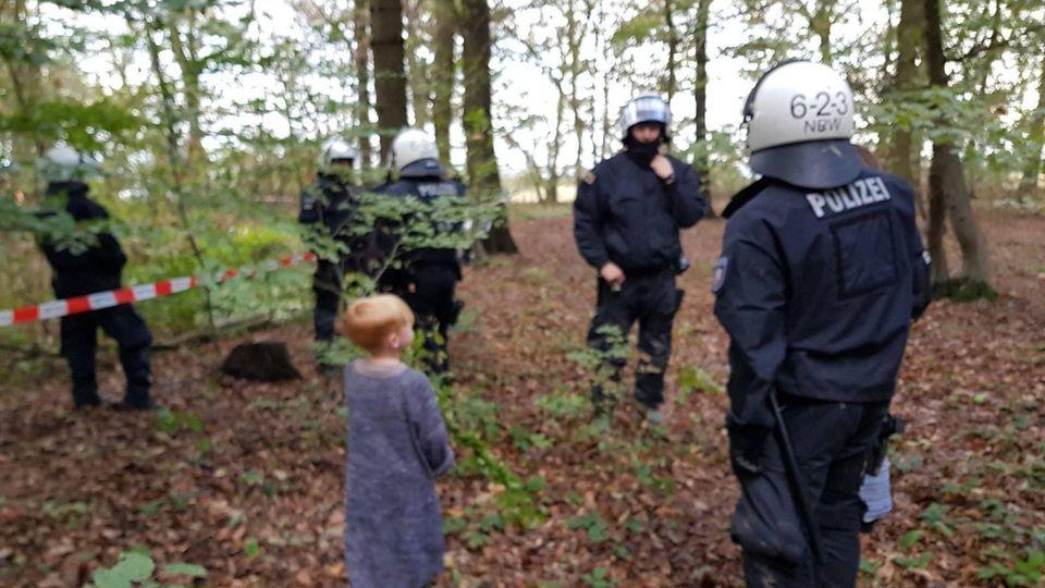 Die Situation im Hambacher Forst