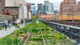 High Line Park   anhattans mehr als zwei Kilometer lange Großstadtoase entstand 2009 auf einer alten Eisenbahntrasse im Westen. Aus dem alten Brachland wurde etwas Besonderes: Der Park auf dem Hochbahnviadukt erstreckt sich von der Gansevoort Street bis 34. Straße, ein idealer Platz zum Pausieren.  Infos: www.thehighline.org und zumDownload der App unter www.thehighline.org/app