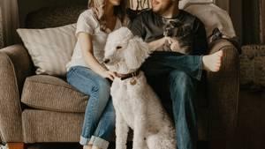 Päärchen auf der Couch mit Hund und Katze