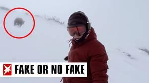 Snowboarderin mit Bär im Hintergrund
