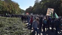 Die geplante Rodung des Hambacher Forst durch den Energiekonzern RWE trifft auf großen Protest in der Bevölkerung