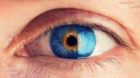 in der Farbe braun und blau