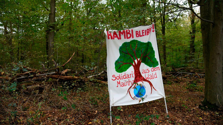 Plakat im Hambacher Forst - Hambi bleibt
