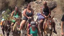 Griechenland: Eselreit-Verbot für übergewichtige Touristen