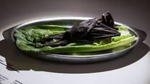 """""""The Disgusting Food Museum"""": Fledermaus"""