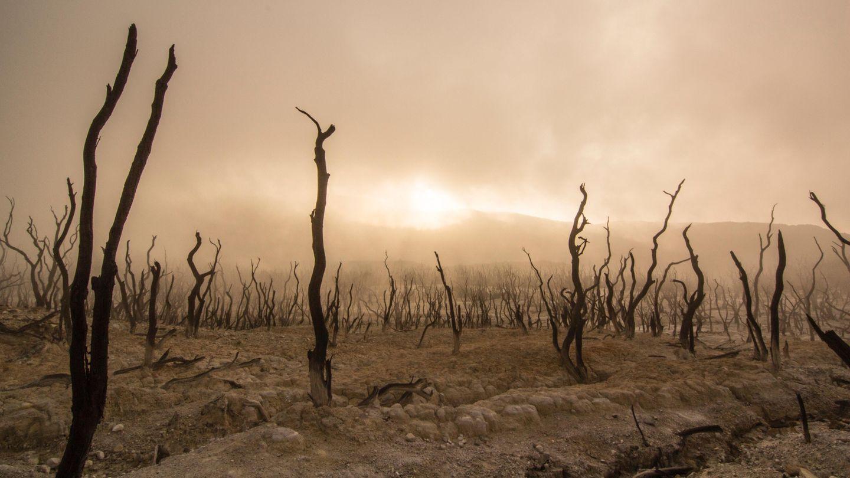 Klimakatastrophe