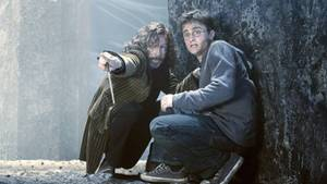Harry Potter und Sirius Black