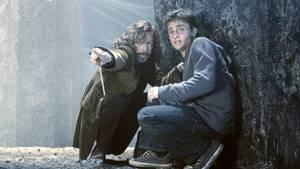 Harry Potter und Sirius Black