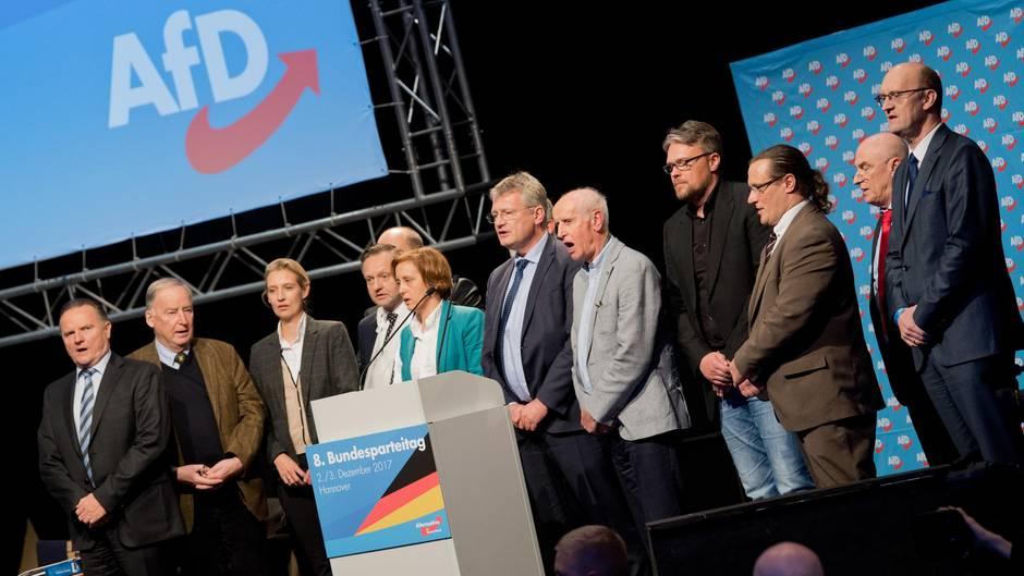 Der neugewählte Bundesvorstand der AfD
