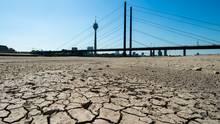 Die Erde im Flussbett des Rheins ist aufgrund der Dürre ausgetrocknet und aufgerissen