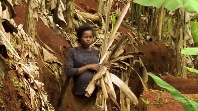 Upcycling: Wie aus Pflanzenabfällen in Uganda Papier gewonnen wird