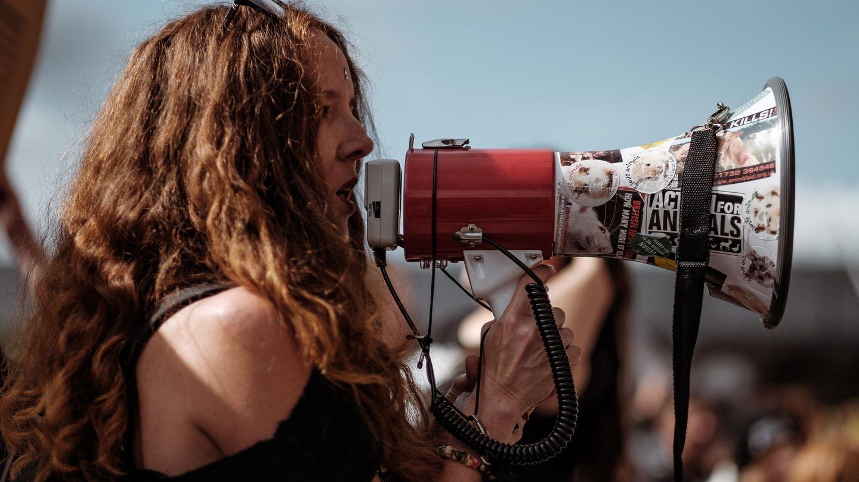 Politiker, Lehrer, Schüler und Netzaktivisten rufen zum Protest gegen die Pläne der AfD auf