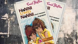 """Ein Buch aus der """"Hanni und Nanni""""-Reihe von Enid Blyton"""