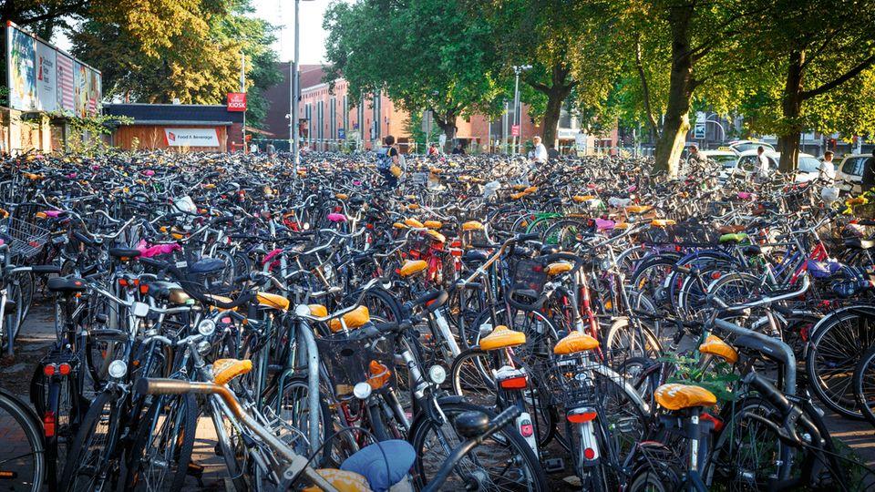 Am Bahnhof von Münster haben Hunderte ihre Räder abgestellt. Knapp 40 Prozent ihrer Wege legen die Bewohner der Stadt auf dem Drahtesel zurück.