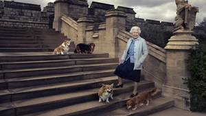 Queen Elizabeth II. und ihre Corgis