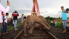 Arbeiter bergen einen toten Elefanten nahe der indischen Stadt Jamshedpu