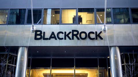 Blackrock Investment-Unternehmen