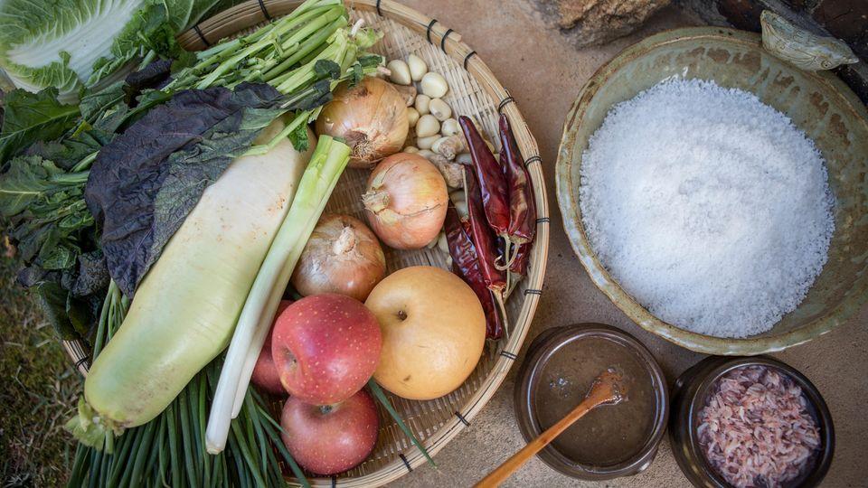 Ein Füllhorn der Aromen  Die Aromatisierung vonKimchikennt keine Grenzen. Frau Park setzt Rettich und Frühlingszwiebeln ein, Schnittknoblauch und Zwiebeln, Chili natürlich (und nicht zu knapp) und selbst Äpfel sowie (rund und gelb) koreanische Birnen. Sämtliche Zutaten werden fein gerieben oder gehackt und miteinander unter Zusatz von etwas Wasser und Reisschleim zu einem Würzschlamm gemischt, der dem gesalzenen und danach wieder ausgewaschenen Kohl zwischen die einzelnen Blattlagen gepackt wird; so wie dem Haar beim Färben einzeln die Strähnen eingestrichen werden.