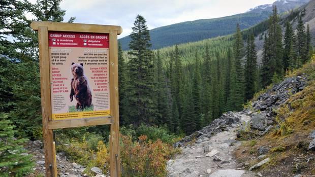 Auf diesem Wanderweg kann es zu Begegnungen mit Grizzlybären kommen