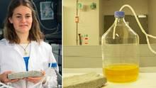 Universität Kapstadt: Forscher gewinnen Ziegelsteine aus Urin: Pinkle, pinkle, Häusle baue!