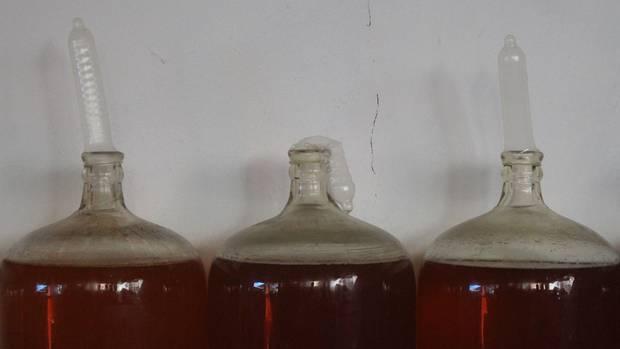 Kuba, Havanna: MitKondomen, die auf Weinflaschen gestülpt sind, kontrolliert Orestes Estevezden den Fermentationsprozess