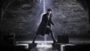 """""""Harry Potter""""-Prequel: """"Phantastische Tierwesen: Grindelwalds Verbrechen"""""""