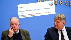 AfD-Politiker Alexander Gauland und Jörg Meuthen haben von den Mitgliedern klare Vorgaben für die Europawahl bekommen