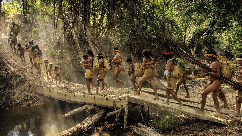 Awá-Familien brechen im Amazonasgebiet zu einem Streifzug auf. Etwa hundert Awá leben weiter ohne Kontakt im Amazonasgebiet, obwohl der Druck durch illegale Holzfäller und Siedler auf sie immer größer wird.