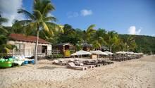 Sonnenliegen unter Palmen an einem Karibik-Strand