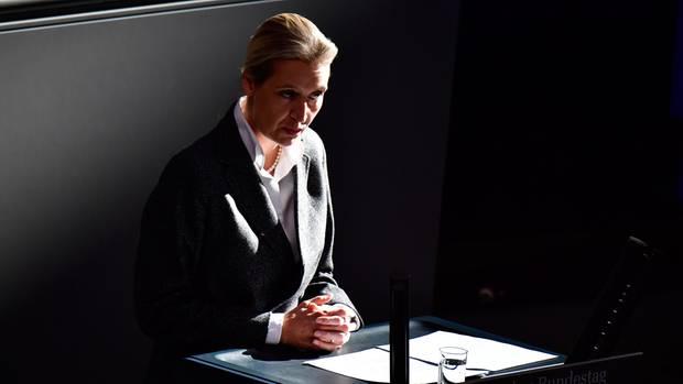 """""""Wahlkampfspende Alice Weidel"""" sei als Verwendungszweck auf den Überweisungen angegeben gewesen"""