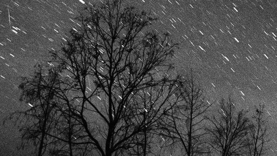 Nachtaufnahme mit Langzeitbelichtung zeigt einen Leoniden-Sternschnuppenstrom über der Azrakwüste in Jordanien