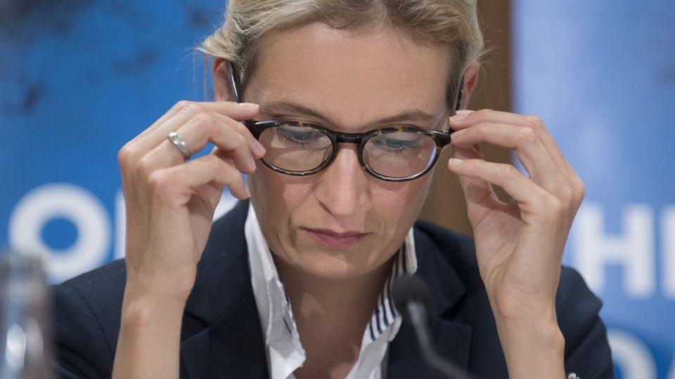 Parteienfinanzierung: Der Chemiekonzern, der den Parteien in Deutschland Millionen gibt