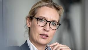 Alice Weidel, AfD Bundesvorstandsmitglied