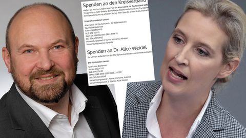 Baden-Württembergs AfD-Schatzmeister Frank Kral, Fraktionschefin Alice Weidel